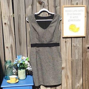 Banana Republic Cap Sleeve Sheath Dress Sz 8